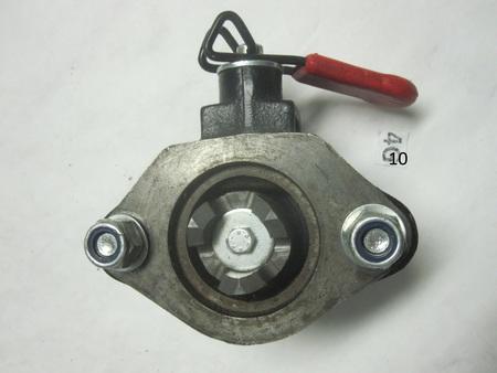 Medium img 9955