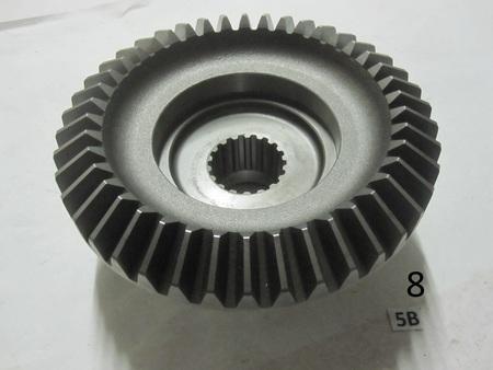 Medium img 7544